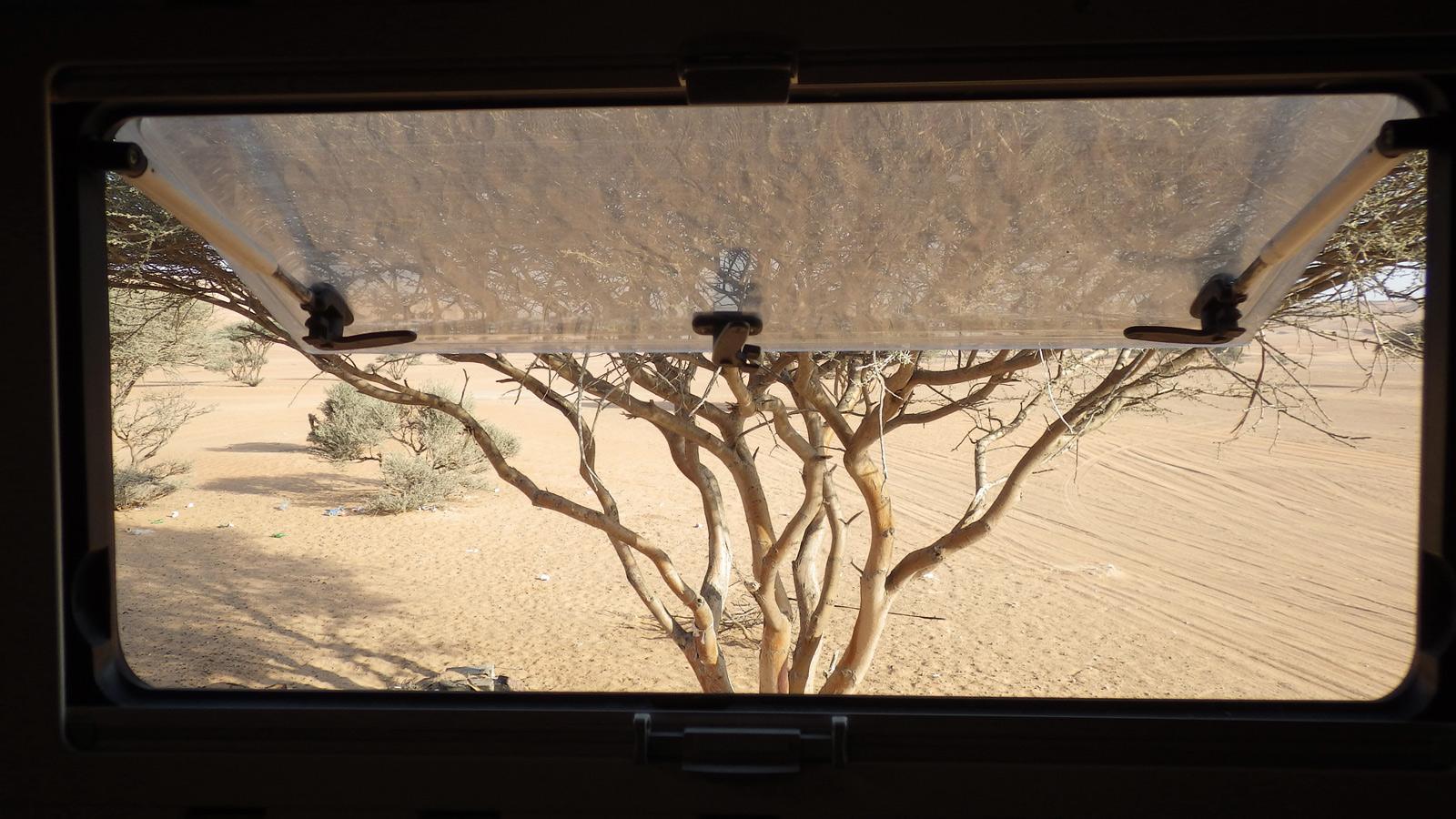IMGP2736_2016_01_05-Wahiba-Sand-vers-Al-Mintirib-(Oman)